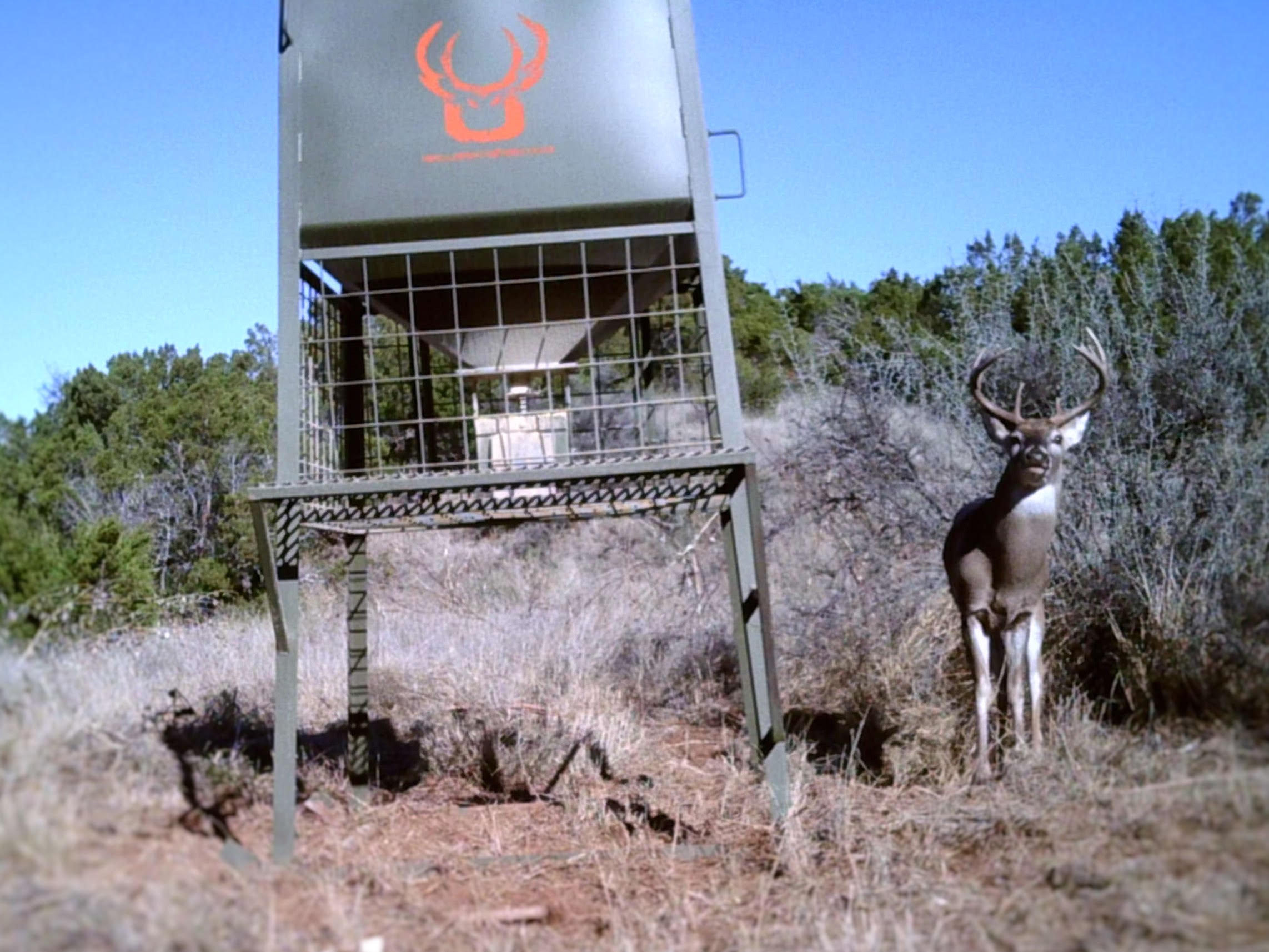 corn bay low feeder fed steel feeders bran deer gravity